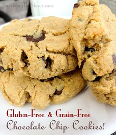 Gluten-Free & Grain-Free Chocolate Chip Cookies made with coconut flour!!