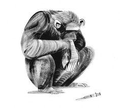 The Wonderful Animal Illustrations of Ping Zhu