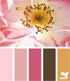 flora hues (girls room)