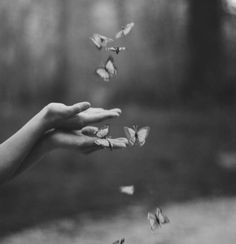 ➰ So the darkness shall be the light, and the stillness the dancing ~T. S. Eliot