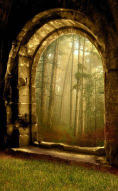 the doors, secret gardens, window, dream, fairy tales, fairi, forest, place, gate
