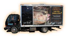 farm, fridg truck