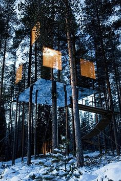 mirrored tree house in Sweden. The Mirrorcube at Treehotel.