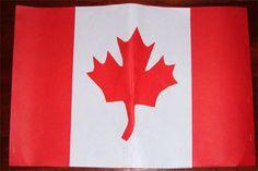 Canadian Unit Study @ mrsnelsonsclass.com - Canadian Flag