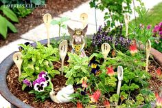 DIY Fairy Herb Garden - a creative, edible project with crafting too!