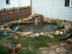 small outdoor pond designs | small Backyard ponds ideas
