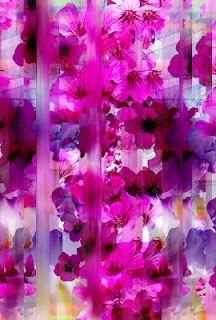 Flower/blur drawing
