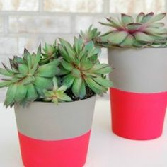 Ikea pots and neon spray paint are the new dream team! Fun DIY with a spring/summer must have trend #neon