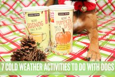 7 Cold Weather Activ