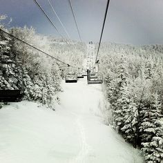 Stowe Mountain Resort  Photo: Burton Snowboards