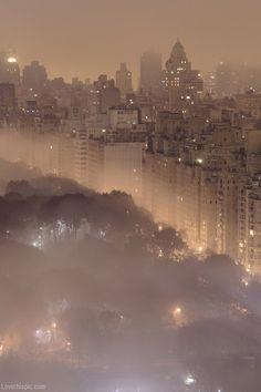 Misty New York night photography sky night city lights trees buildings