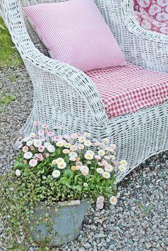 wicker backyard comfort