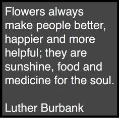 quotes gardening, garden design, floral design quote, flower quotes, gardening quotes, luther burbank, garden quot, design blogs, flowers