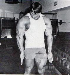 Arnold.