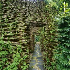 sweden, willows, green walls, outdoor space, gardens, walkway, sauna, house guests, guest houses