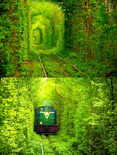 The Love Tunnel, Ukraine.