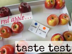 Ideas for apple taste test on Johnny Appleseed day