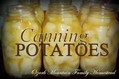 Canning Potatoes at Ozark Mountain Family Homestead