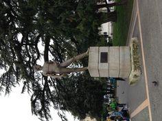 Ai caduti per la Libertà - Piazza Bra, Verona