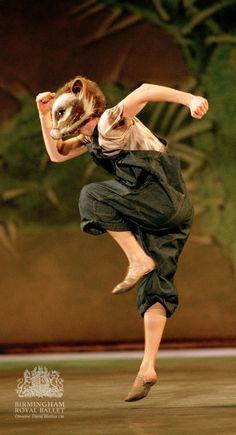 Birmingham Royal Ballet - 'Still Life' at the Penguin Café: Robert Parker as Texan Kangaroo Rat; photo: Bill Cooper