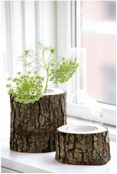 tree stump planters
