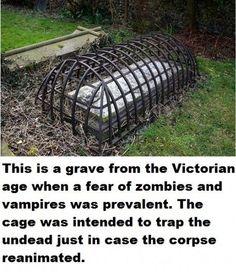 Trap the undead