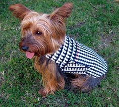 Dog Coat, Small, Fleece Houndstooth, modeled by a Silky Terrier