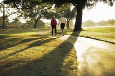 Easing Brain Fatigue With a Walk in the Park - NYTimes.com