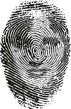 fingerprint illusions 6 optical illusion