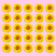 Vintage Sunflower Background Sunflowers Tumblr