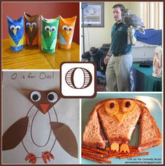 Learning about the letter O and studying owls