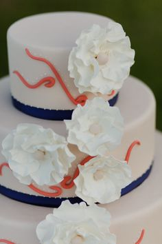 Coral and navy cake, white flowers.