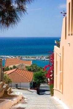 Bougainvilla, Pythagorion, Samos.