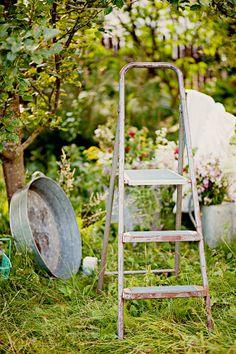 old galvanized wash tub....unusual size and shape! metal ladder, buckets, vintag ladder, wash tubs, apples, orchard ladder, appl orchard, garden, apple orchard