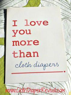 The Cloth Diaper Revival blog post