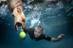 Summer's Here and It's Time To Get Into Water | Dog Whisperer Cesar Millan Photo by Seth Casteel