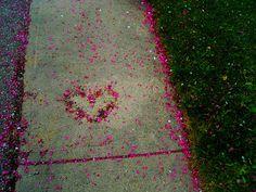 path of love