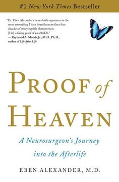 Proof of Heaven: A Neurosurgeon's Journey into the Afterlife by Eben Alexander III, http://www.amazon.com/dp/1451695195/ref=cm_sw_r_pi_dp_ejqSqb1AE4H4G