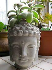 Buddha Head Planter, Concrete Succulent Plant Pot, Garden Decor Unpainted,