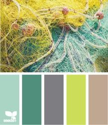 netted color pallet