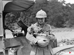 vintage everyday: Old Photos of Cats in the Army