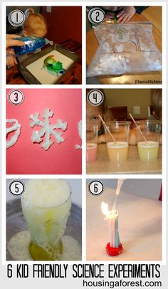 6 Kid Friendly Science Experiments ~ Housing A Forest