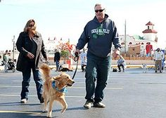 The 2015 Ocean City Dog of the Year, Mr. P.W. Scrubbs, with owners Stephanie Lindley and Robert Wilent of Ocean City, walks over to receive his crown from Lynne Lewis, advisor with the Ocean City Dog Park Association, Saturday, Nov. 8, in the parking lot of the Tahiti Inn. Proceeds and donations from the event go towards the dog park's maintenance and upgrades.