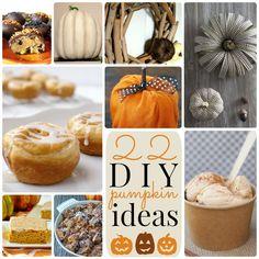22 DIY Pumpkin Ideas!