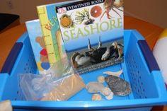 Real World Reading discoveri basket, homeschool languag
