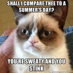 Grumpy Cat haha
