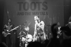 Toots and the Maytals Love love love