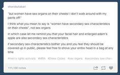feminism argumentative essay