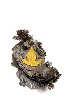 yellow and gray (mary jo hoffman)