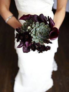 Calla Lilies, Chocolate Cosmos, Succulents